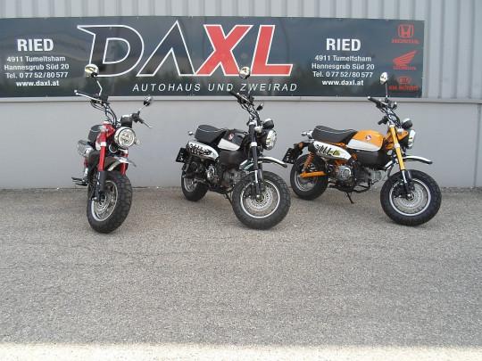 Honda Monkey Z125 bei Daxl – Autohaus und Zweirad in Oberösterreich in Ihre Fahrzeugfamilie