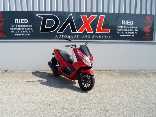 Honda PCX 125 bei BM || Daxl Bikes in