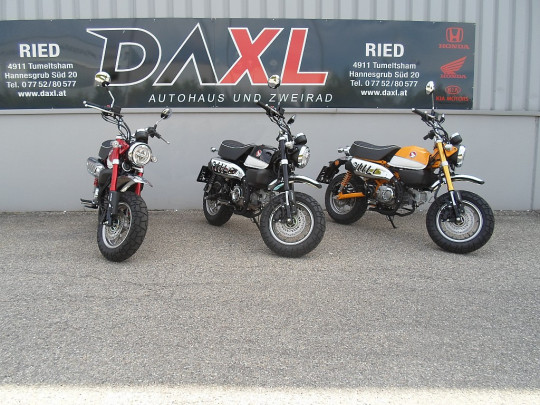 Honda Monkey Z125 bei BM    Daxl Bikes in