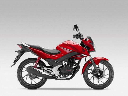 Honda CBF 125 bei BM || Daxl Bikes in