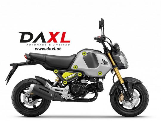 Honda MSX 125 € 57,62 monatlich – JETZT VORBESTELLEN bei BM || Daxl Bikes in