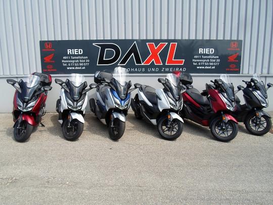 Honda Forza 125 € 67,52 monatlich bei BM || Daxl Bikes in